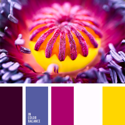 Farbpalette Nr. 25