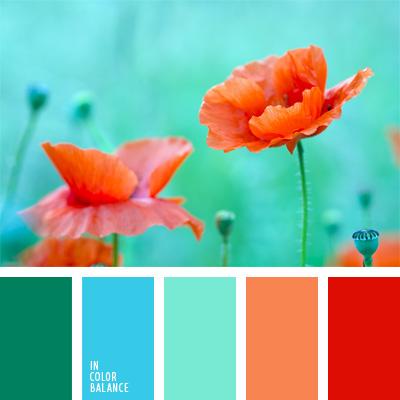 Farbpalette Nr. 50