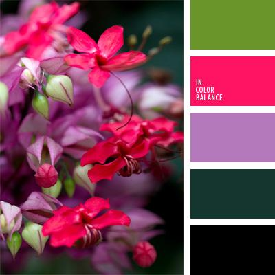 Farbpalette Nr. 158