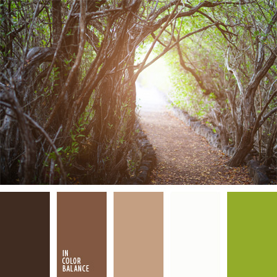 Image Result For Rosa Cromatica Colores