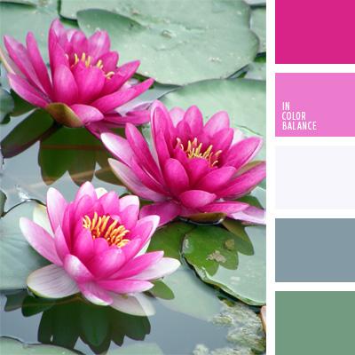 Farbpalette Nr. 204