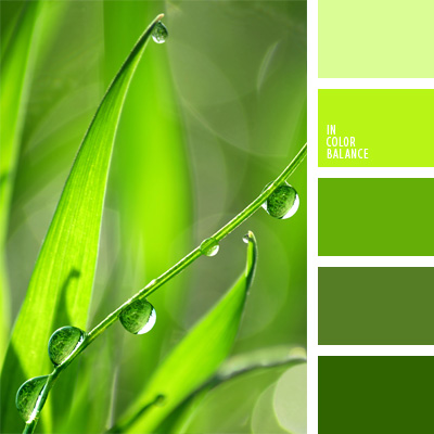 Fresh Shades Of Green Paint