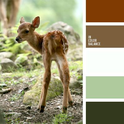 Farbpalette Nr. 255